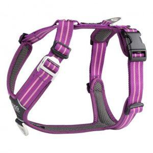 Dog Copenhagen Comfort Walk Air Purple Passion - XS