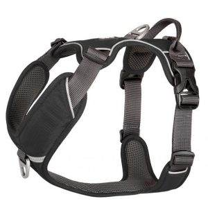 Dog Copenhagen Comfort Walk Pro Black - XL