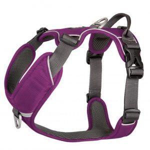 Dog Copenhagen Comfort Walk Pro Purple Passion - S