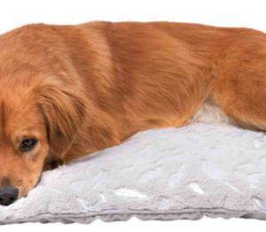 Feather Blanket, lækkert tæppe til kæledyret