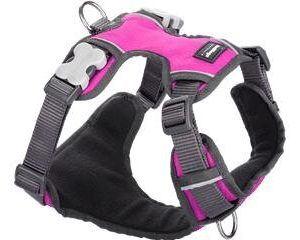 Red Dingo Polstret Hundesele Med Antitræk - Pink - Flere Størrelser