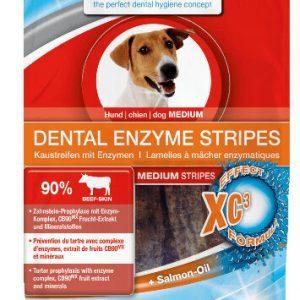 BogaDent Hunde DENTAL Enzym Stips - 100g - Maxi