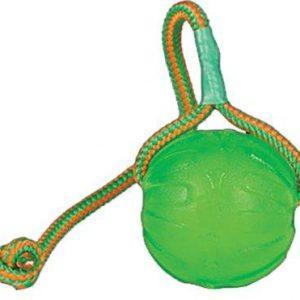 Starmark Hundelegetøj Slidstærkt, Swing ´n Fling Chew Ball