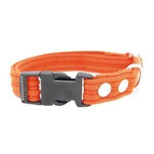 Webbing halsbånd med snaplås, Orange