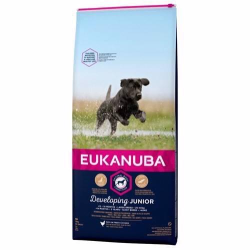 Eukanuba Junior Large Breed, 12 kg