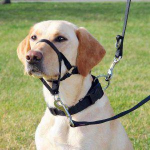 Antitrækseler/Snudeseler til hunde mod trækken ??? 5 størrelser, XL-Kurz