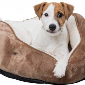 Cosmo Hunde og katteseng Ø 60 cm