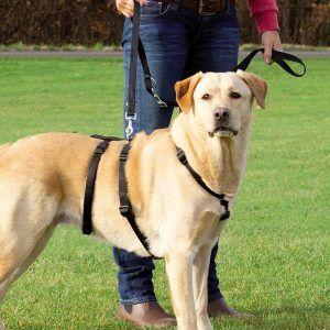 Trixie Hundeselen Stay, selen hunde ikke kan bryde ud af!